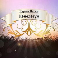 Нурлан  Насип - Көпөлөгүм тексти