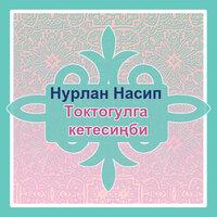 Нурлан Насип - Токтогулга кетесиңби тексти