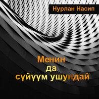 Нурлан Насип — Менин да сүйүүм ушундай (New version) тексти
