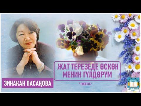 Зинакан Пасаңова - Жат терезеде өскөн менин гүлдөрүм повесть